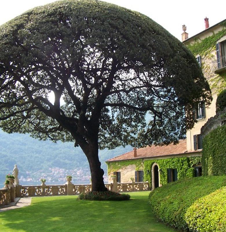 Villa_Balbianello2